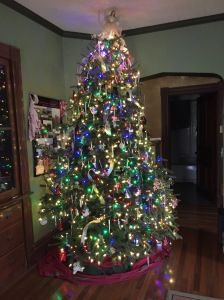 My living room tree, with family ornaments. A 9 foot real tree! Smells SO GOOD!