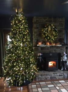 Ten foot artificial tree dubbed the Sci-fi tree for the Star Trek, Star Wars, and Dr. Who ornaments. Note the Santa hats on Vader and Clone Trooper.